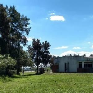 Se pone en marcha el «Vivero de Nativas Reserva Escuela Alberdi»